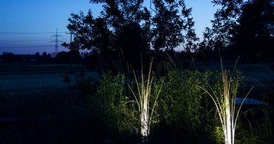 Die Munich Reeds Leuchte von Lichtlauf